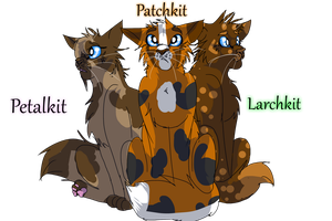 30 Day Warrior Cats Challenge (Day 15) by WarriorCat3042