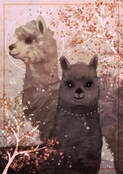 Alpacas by mrokat