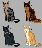 Cat adopt set 2 *closed* by Evertooth