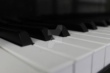 Piano Keys by car0003