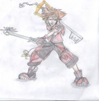Sora Sketch by Did2009