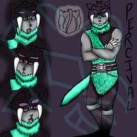 Percival Ref Sheet by forestchick501