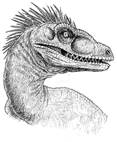 Raptor by LycanthropeHeart