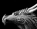Dragon Head on Scratch Board by Xovq
