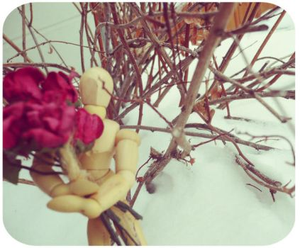 Mannequin's Roses by AlexMassacre