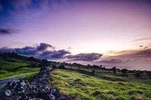 Color and Light | Maui by JasonKoons