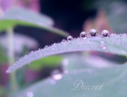 Cool drops by discret