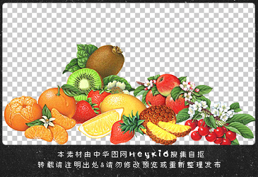 11_Fruit_PNGs_By_heykid by heeykiid