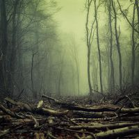 Beginning of the End by Oer-Wout