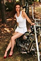 Antique Motorcycle Show by CindyHoliday