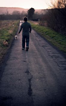 Walking the Dogs by Scuzi