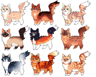 Cat Adopts 10 [300pts/3$ - OPEN} by Chintzy-Adopts