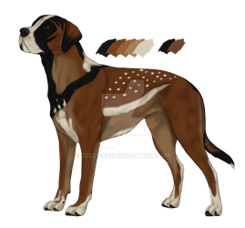 WinchesterFoxx custom - King red sable by Zeldienne