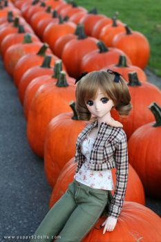 Aki and pumpkins :D by chun52