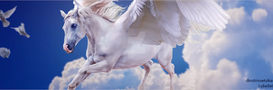 HEE Stable Banner | Skyview Equestrian by LargestBirdie
