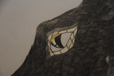 A dragons eye (a sneak peak) by WhiteDemonClaw