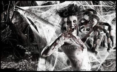 Itsy Spooksy Spider by Anathema-Photography