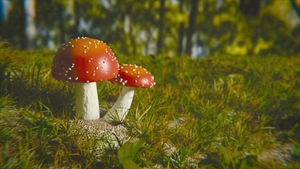 Red Mushrooms by QuickBoomCG