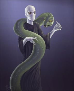 Voldemort by Fakelore