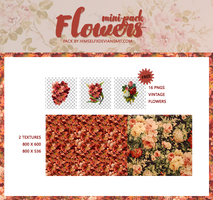 Vintage Flowers pack by hxwlett