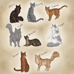 New Kitty Fanbabies by AnnMY