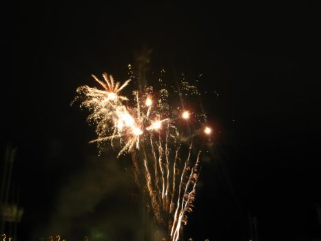 Awesome firework 2 by hoop479