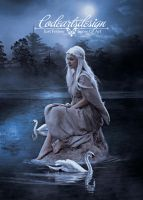 ==== THE SWAN LAKE ==== by codeartworks