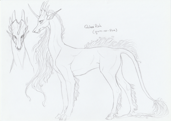 Quinu2 by moonfeather