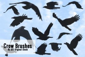 Crow Brush pack by AJK-Original-Stock