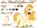 Seven Minutes Reference Sheet by equinepalette