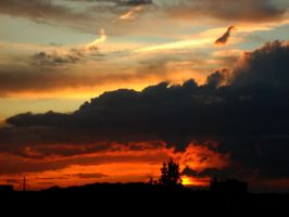Great Sunset by Tigerente-in-love