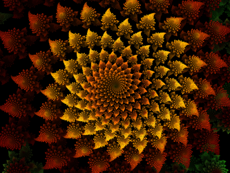 Sunflower Spirals (revised) by akarith