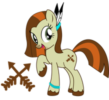 Native American Pony by JuliefooDesigns