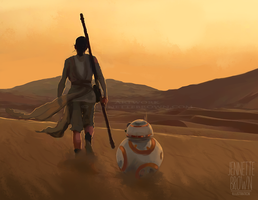 Rey and BB-8 by sugarpoultry