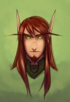 WoW:: Paladin's Portrait by aketan