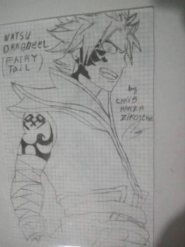 Natsu Dragneel- Fairy Tail by zikostras