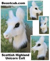 Scottish Highland Unicorn by LilleahWest