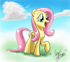 Fluttershy by Ceehoff