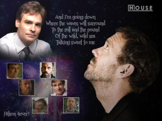 House MD Wallpaper 3 by RubyF95