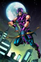 Hawkeye by wardogs101