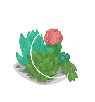 Succulent Charm by featheredcanvas