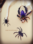 spiders by Galaxxi-Photos