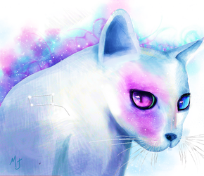 stars and cats by Maimj