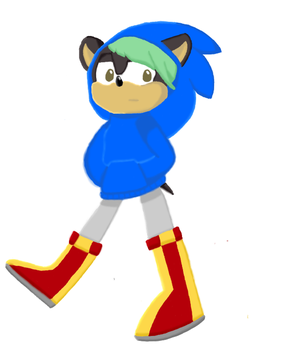 Tyler in a sonic hoodie by Coinfrenzy