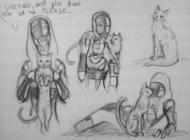 sketches Tali with cat (2) by spaceMAXmarine