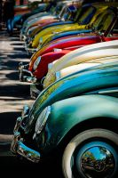 Beetle line... by Romton
