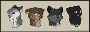 {WC}Thunderclan Medicine Cats by 0-Bluejay-0