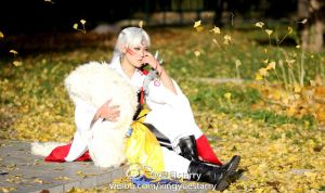 Inuyasha--Sesshomaru by ssnight