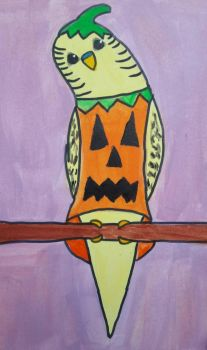 budgie dressed as a pumpkin by TaitGallery
