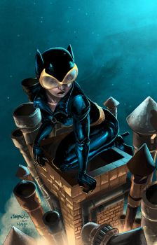 Catwoman colors by nahp75